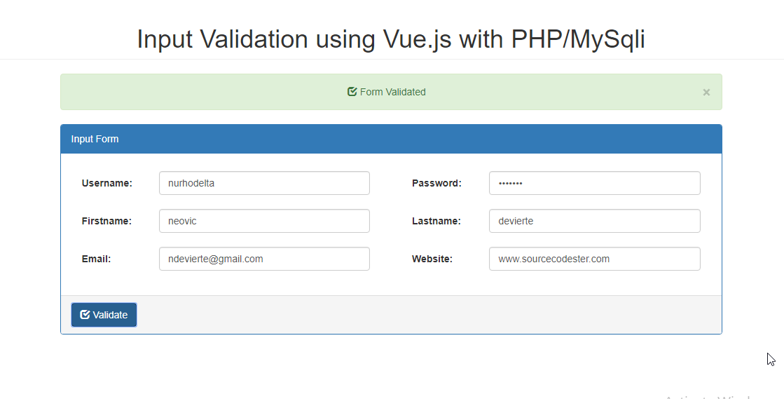 Input Validation using Vue js with PHP | Free Source Code